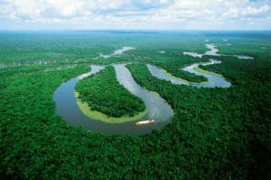 amazon-riverjpg-jpeg-image-480x320-pixels_1211385597796