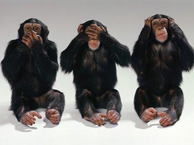 monos-ciego-sordo-mudo