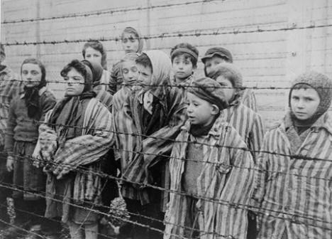 holocausto71