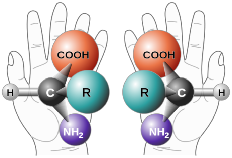 chirality_with_hands-svg_